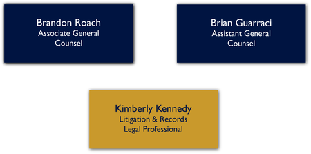 Litigation and Student Team